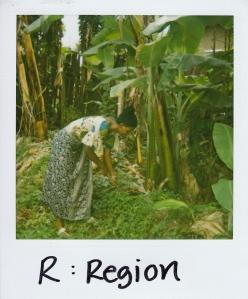 R region