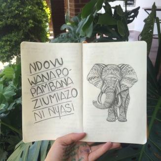 Camila Blog Post 2